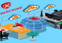 A Data Analytics Approach to the Cybercrime Underground Economy