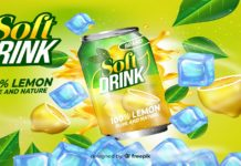 ANALYSIS OF PRODUCTION SYSTEM DESIGN AND MANAGEMENT IN THE SOFT DRINK INDUSTRY