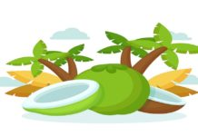 ANTIMICROBIAL AND PHYTOCHEMICAL PROPERTIES OF YOUNG Cocos nucifera(COCONUT) WATER