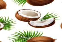 COMPARATIVE ANALYSIS OF COAL AND COCONUT ACTIVATED CARBON
