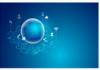 Secure Dynamic Bandwidth Allocation in Wireless Networks Using TTPA