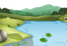 A Study of Hhysico-Chemical Characteristics of Lakes
