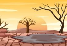 Hydrological Aspects of Drought