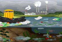 Impact of Solid Waste Disposal on Ground Water Quality