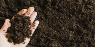 Stabilisation Of Expansive Black Cotton Soil – An Experimental Approach